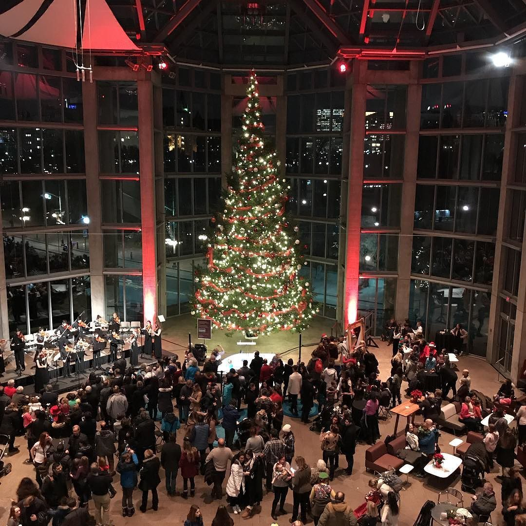 Christmas Trees Ottawa: From The Upper Level At @natgallerycan And Showing The