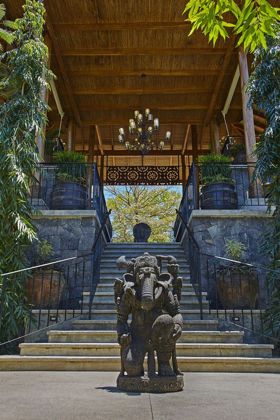 The grand entrance of the Bodhi Tree Juice Bar, Playa Guiones, Nosara. The Costa Rican beach town is seeing an influx of buyers building modern mansions.