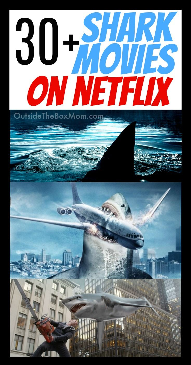 32 Thrilling & Fascinating Shark Movies On Netflix - Best Movies Right Now  | Movies, In and out movie, Shark