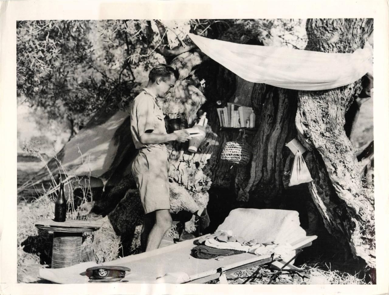 Wwii R A F Officer Makes His Home In Olive Tree In Sicily Orig