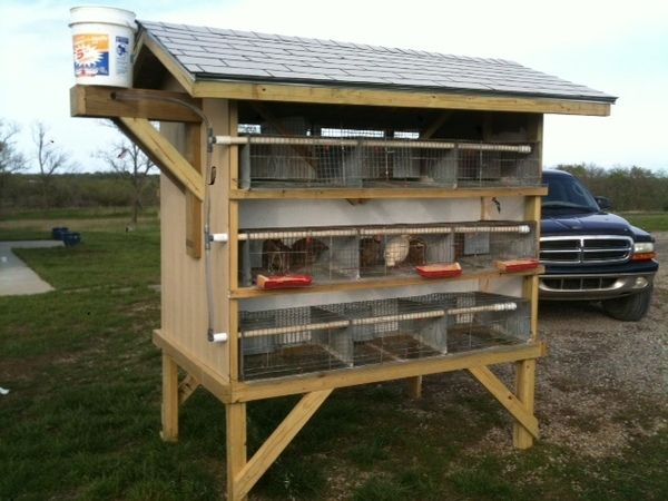 Quail coop competition show off your hard work for Quail housing plans