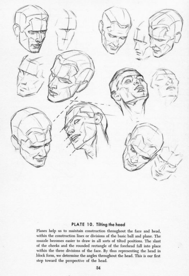 Drawing The Head And Hands - Andrew Loomis   Andrew loomis ...
