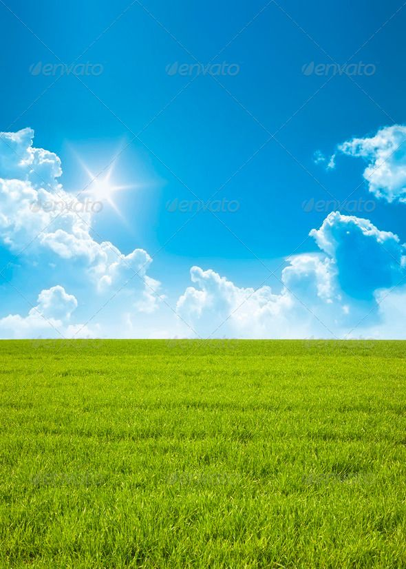 Summer Background Blue Clouds Environment Grass