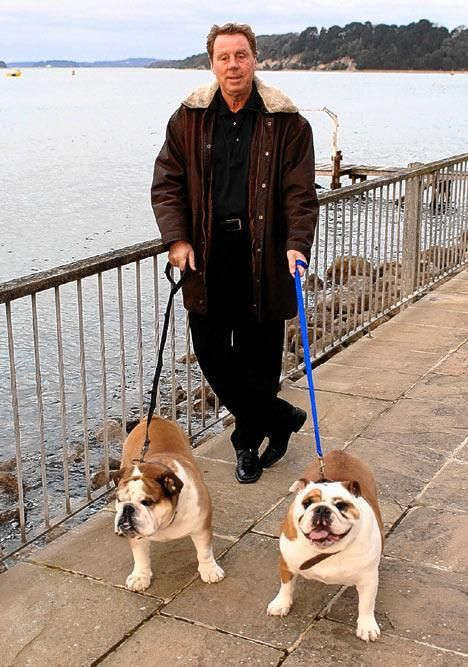 Famous Bulldogs and Famous Bulldog Owners, see them all: https://baggybulldogs.wordpress.com/2013/03/02/famous-bulldogs