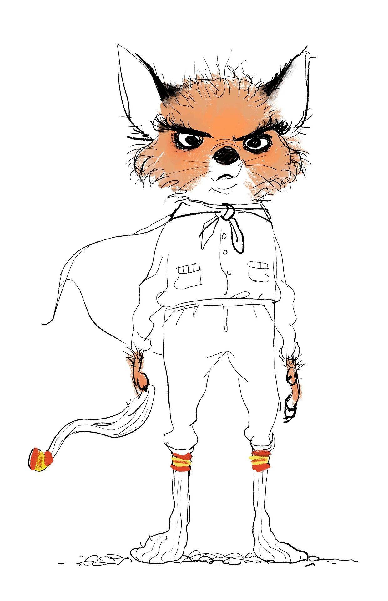Ash From The Fantastic Mr Fox By Wes Anderson Love This Character Fox Illustration Illustration Character Design Character Design Animation
