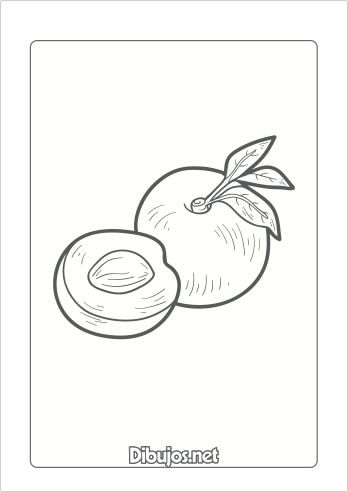 10 Dibujos De Frutas Para Imprimir Y Colorear Dibujos Net Dibujos De Frutas Dibujos Imprimir Sobres