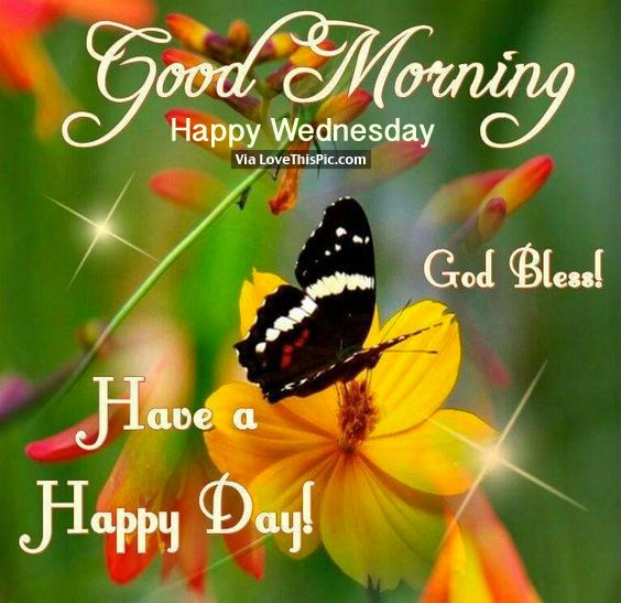 Good Morning, Happy Wednesday Good Morning Wednesday