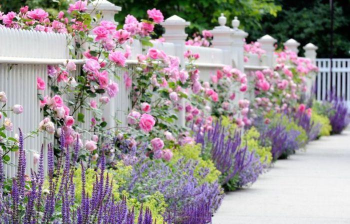 60 id es pour bien agencer son jardin id es de jardin jardins jardin massif et jardin maison - Agencer son jardin ...