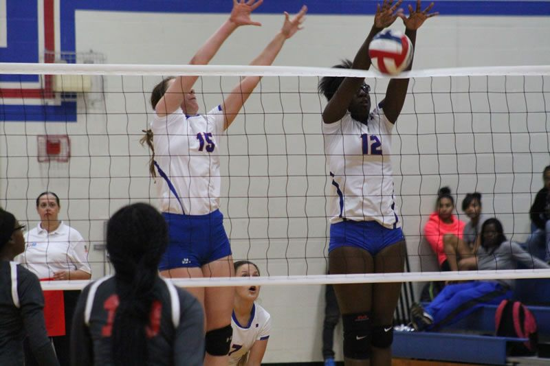 Tem Cat Volleyball Vs Waco Temple Wildcats Temple High School Sports With Images Volleyball High School Sports School Team