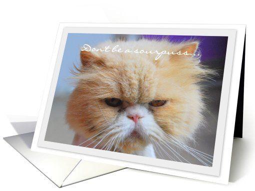 Happy Birthday Sourpuss Persian Cat card – Persian Birthday Cards