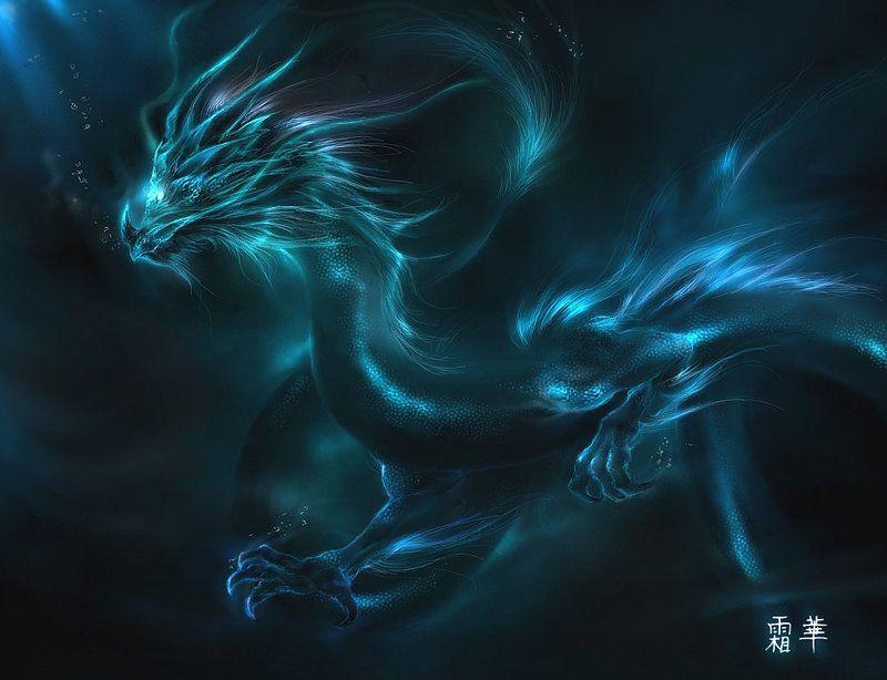 Dragon Symbol Cool Art Long