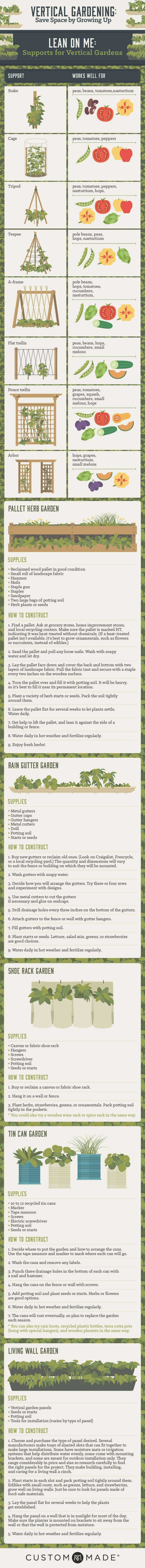 Infographic: How to Grow A Vertical Garden