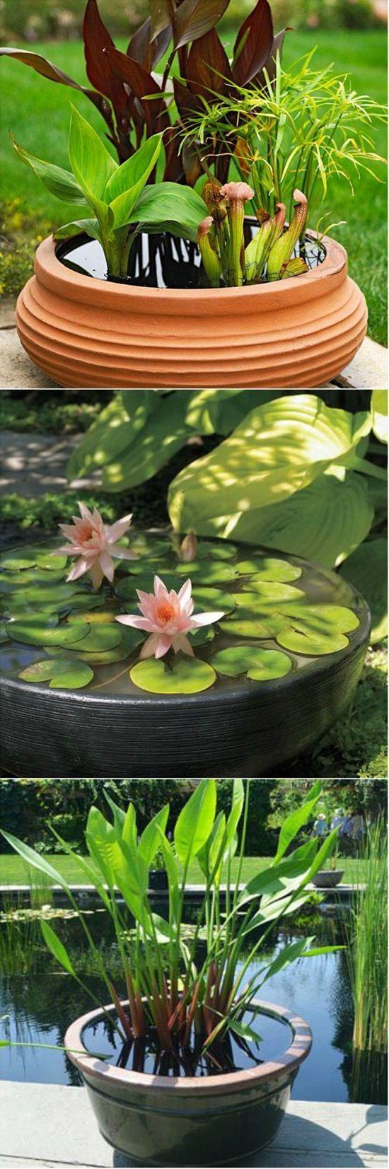 15 diy gardening ideas on budget container water gardens