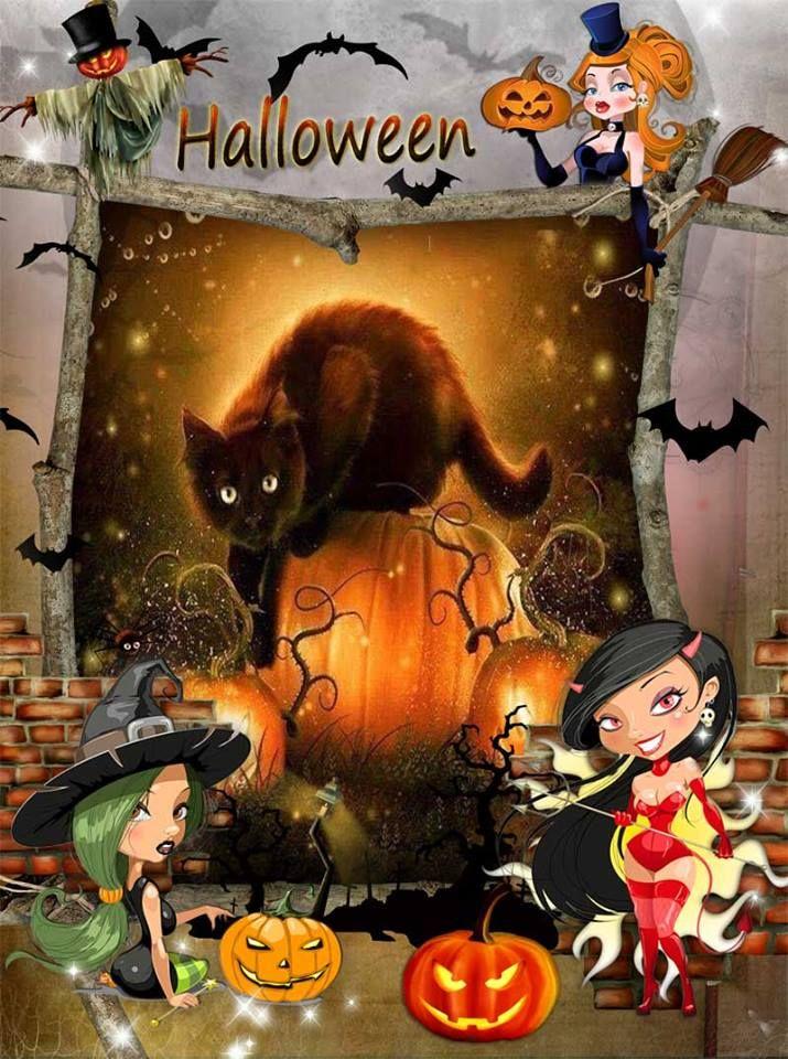 Katzenbilder Halloween Halloween Bilder Halloween Bilder Kostenlos Lustige Halloween