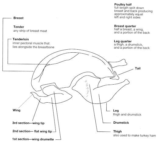 chicken breasts wings and poultry on pinterest : chicken parts diagram - findchart.co