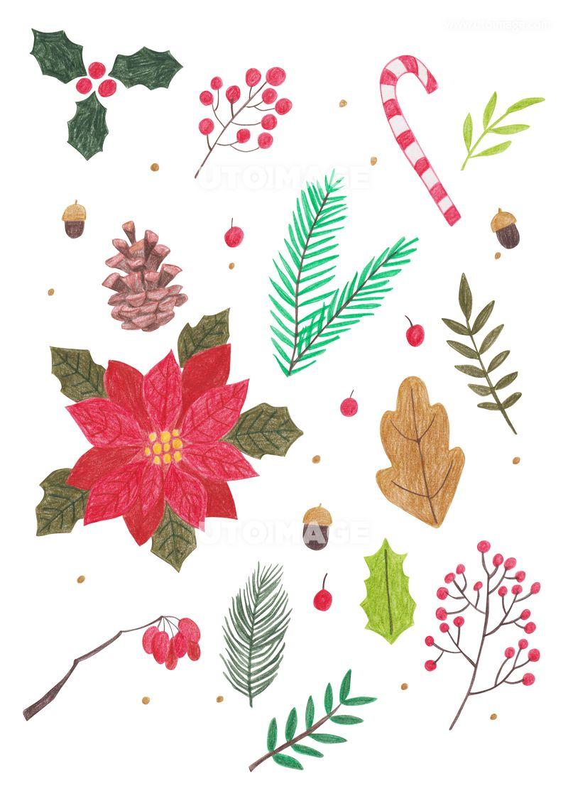 겨울 오브젝트 색연필 드로잉 03 C191106 유자디자인 일러스트 배경 백그라운드 수작업 색연필 드로잉 겨울 시즌 계절 크리스마스 성탄절 성탄 새해 신년 모양 오브젝트 장식 데코 데코레이션 크리스마스 카드 크리스마스 카드