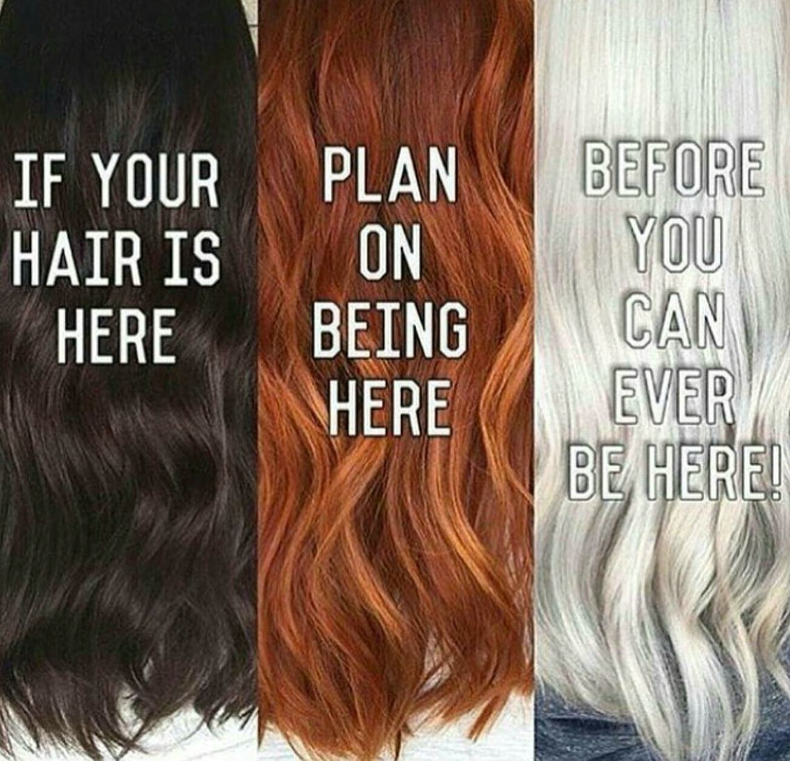 I Can Not Share This Enough Hair Meme Hair Humor Stylist Quotes
