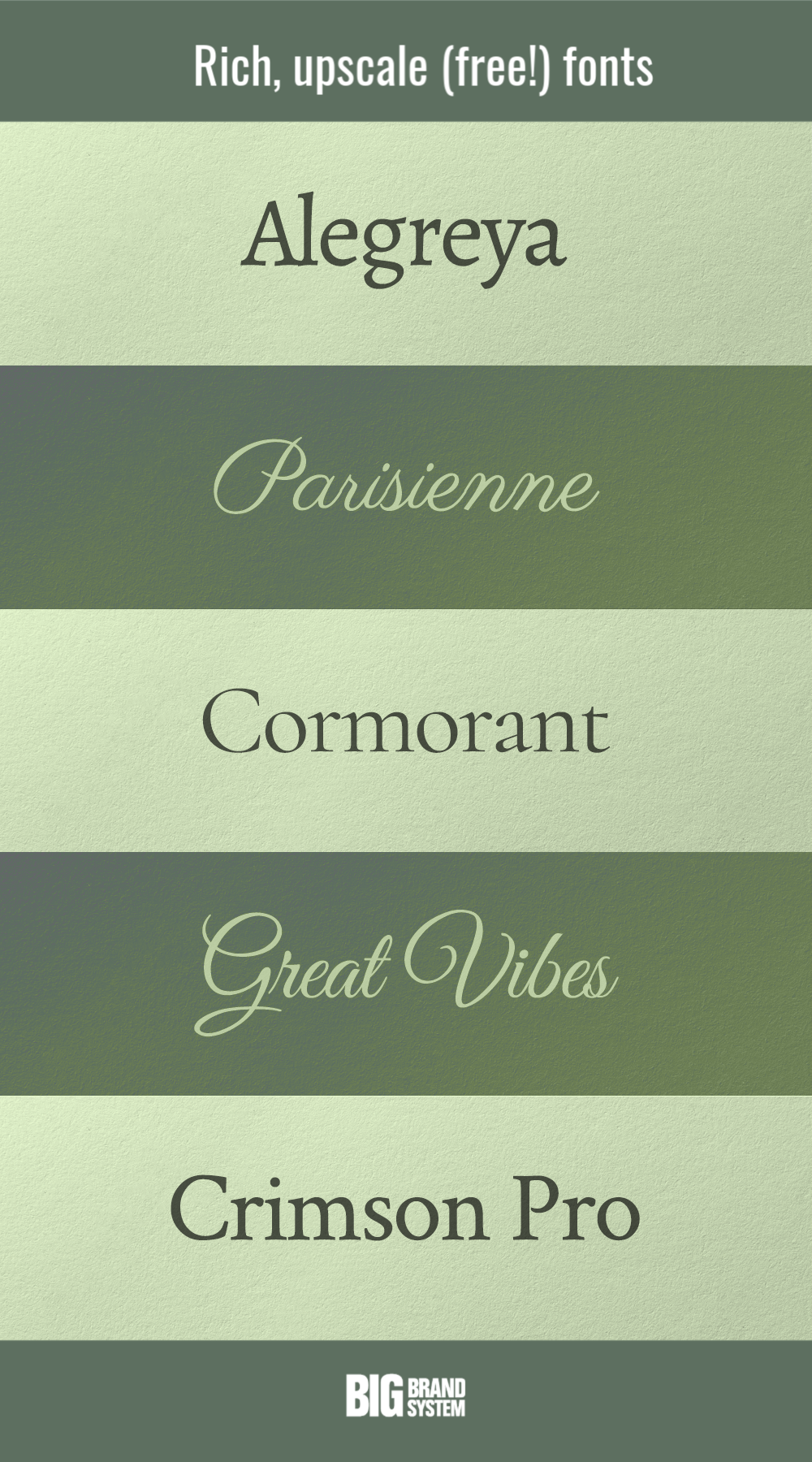 Type Styles of the Rich and Famous Word mark logo