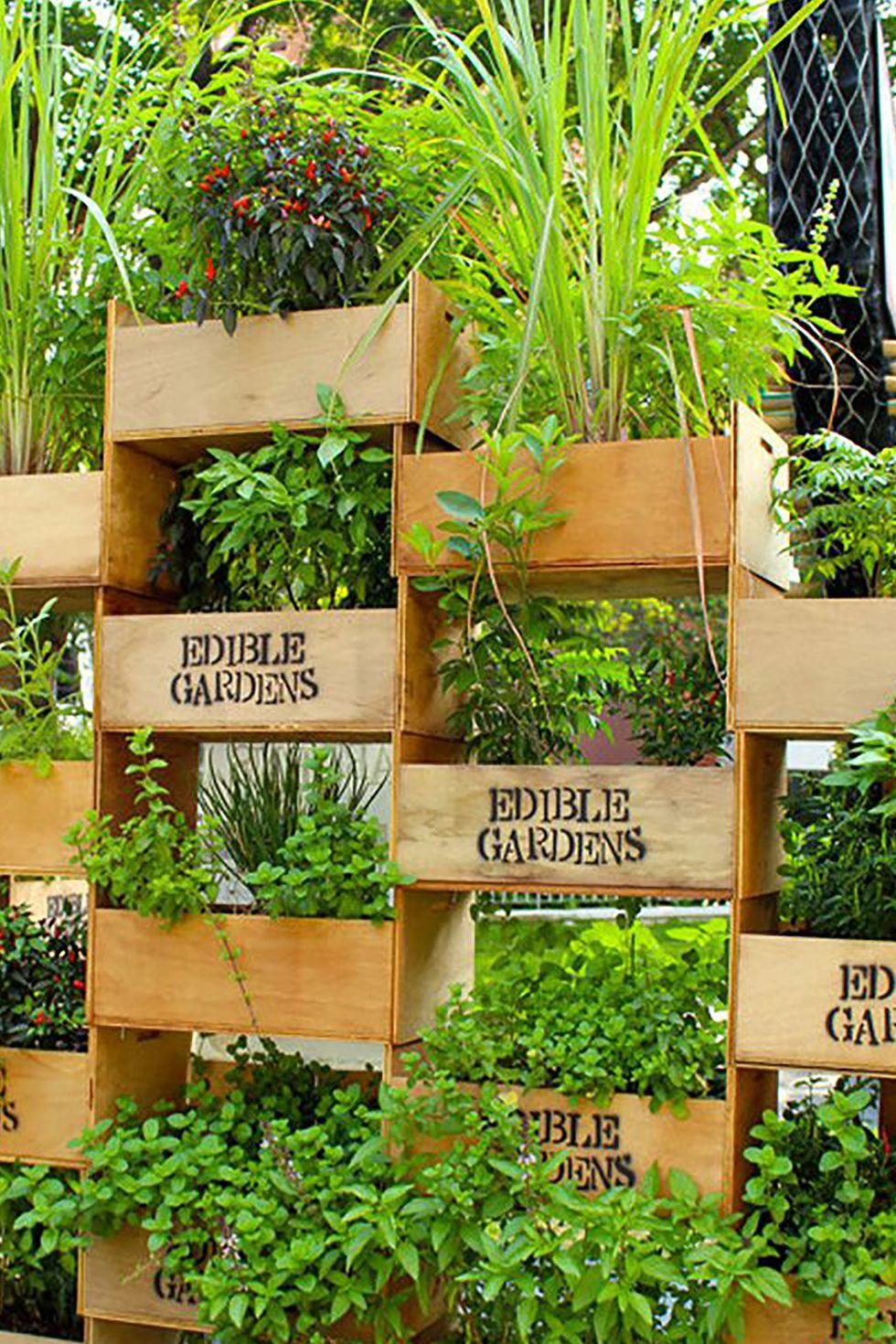 Stacked Crate Vertical Garden In 2020 Vertical Herb Garden Vertical Garden Diy Vertical Vegetable Garden