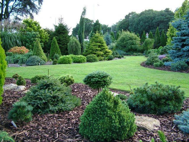 Garden View Oct 09-4 Foxhollow Garden | Landscaping | Pinterest ... Garten Landschaft Gestaltung Wald