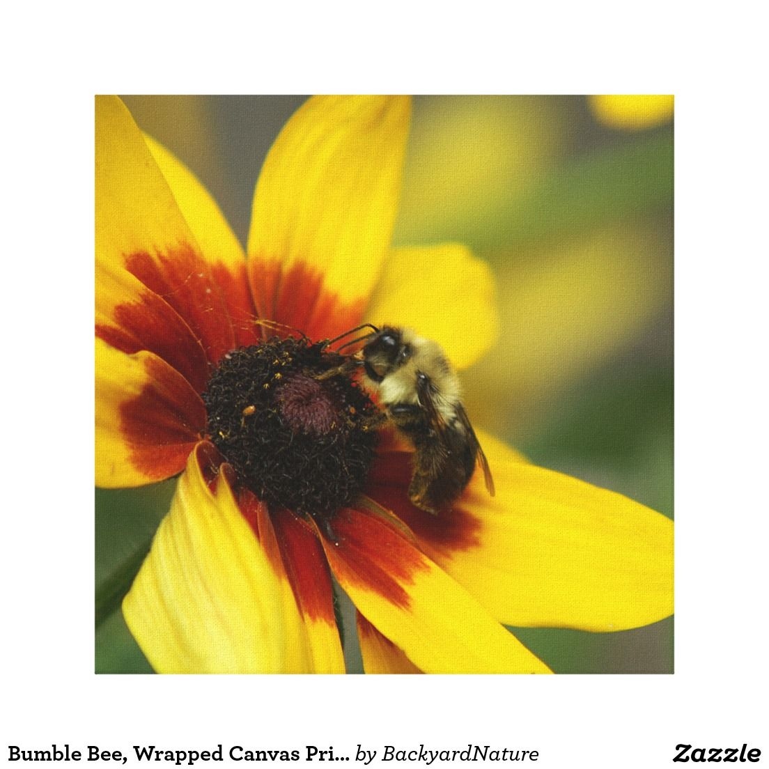 Bumble Bee, Wrapped Canvas Print | Bees wrap