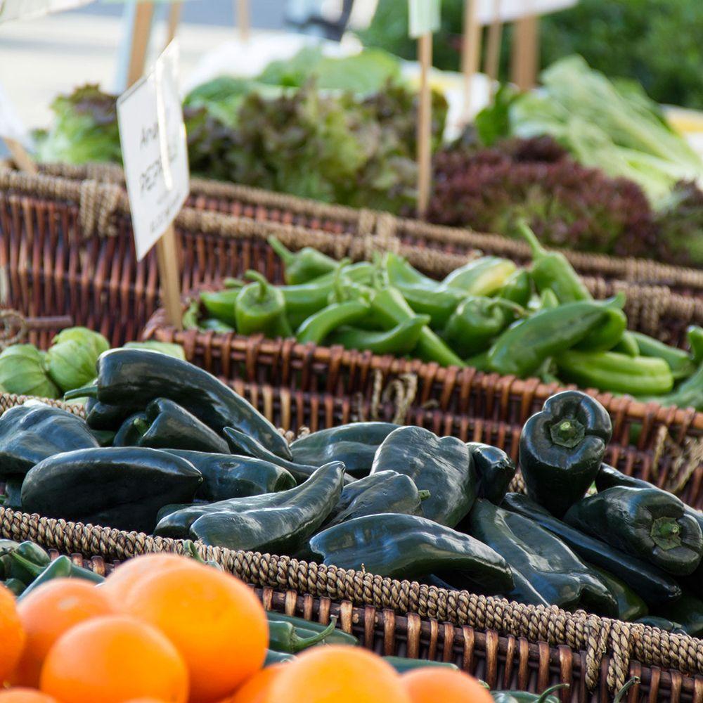farmers to families food box program wisconsin