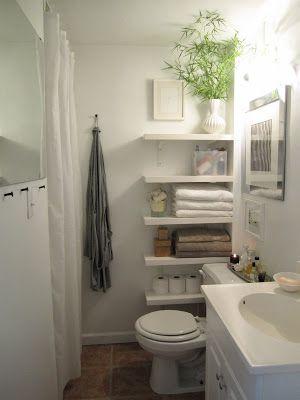 T H E O R D E R O B S E S S E D Update My Bathroom Main Bath Idea - Update my bathroom