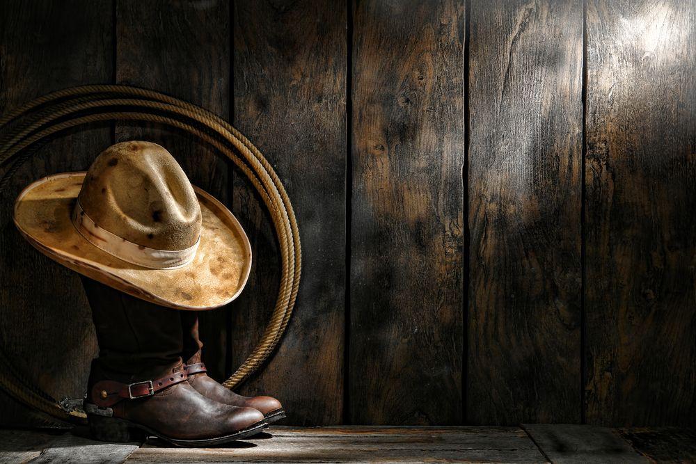 Pin by David Hartl on PROFESSION \u2022 Cowboy