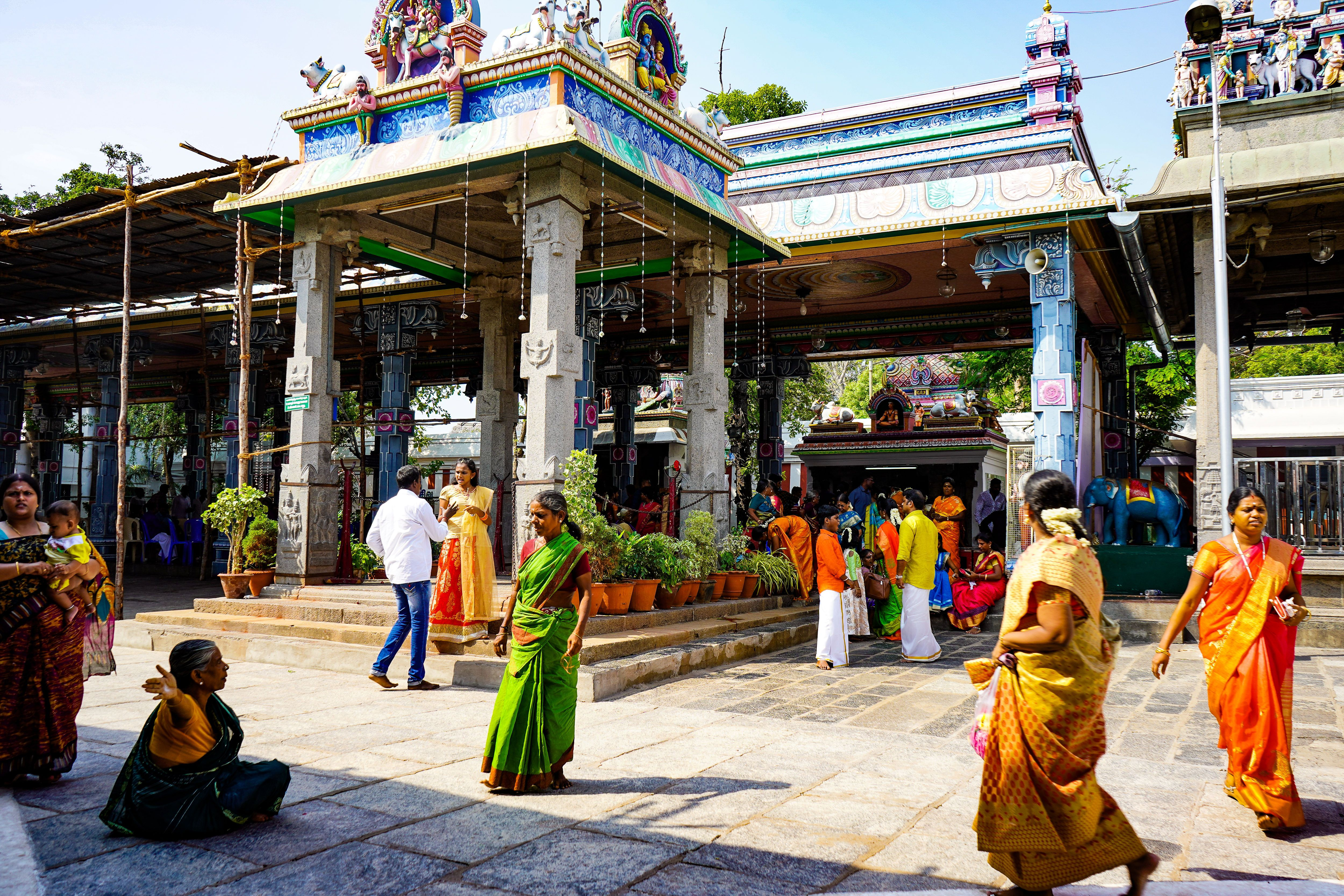 Kapaleeshwarar temple, india, mylapore, Ditch The Tie