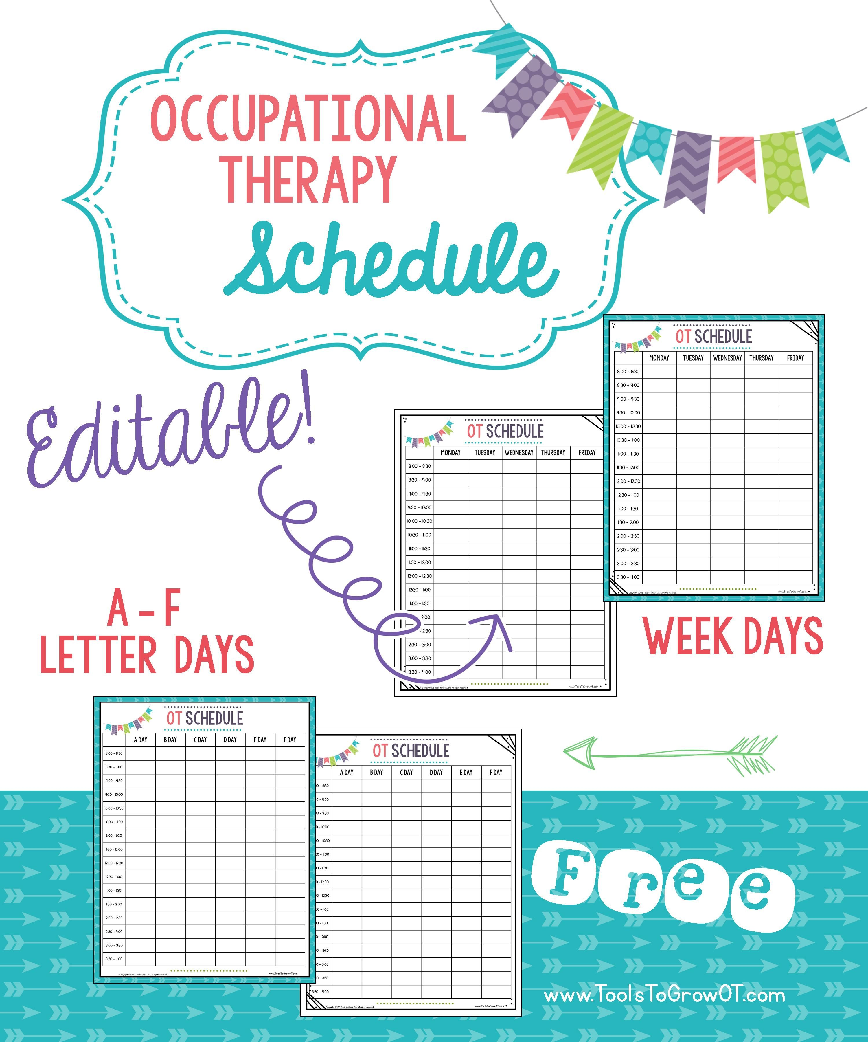 FREE! Daily Schedule - Editable (Week Days & Letter Days Versions). TYPE into forms!