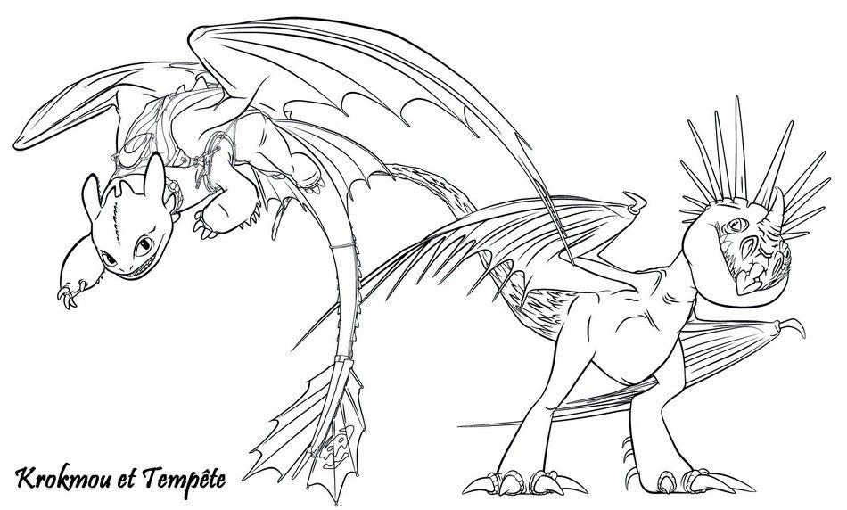 Coloriage A Imprimer Dragons 2 Krokmou Et Tempete Gratuit Et Colorier Coloriage Dragon Coloriage Coloriage Pokemon Legendaire