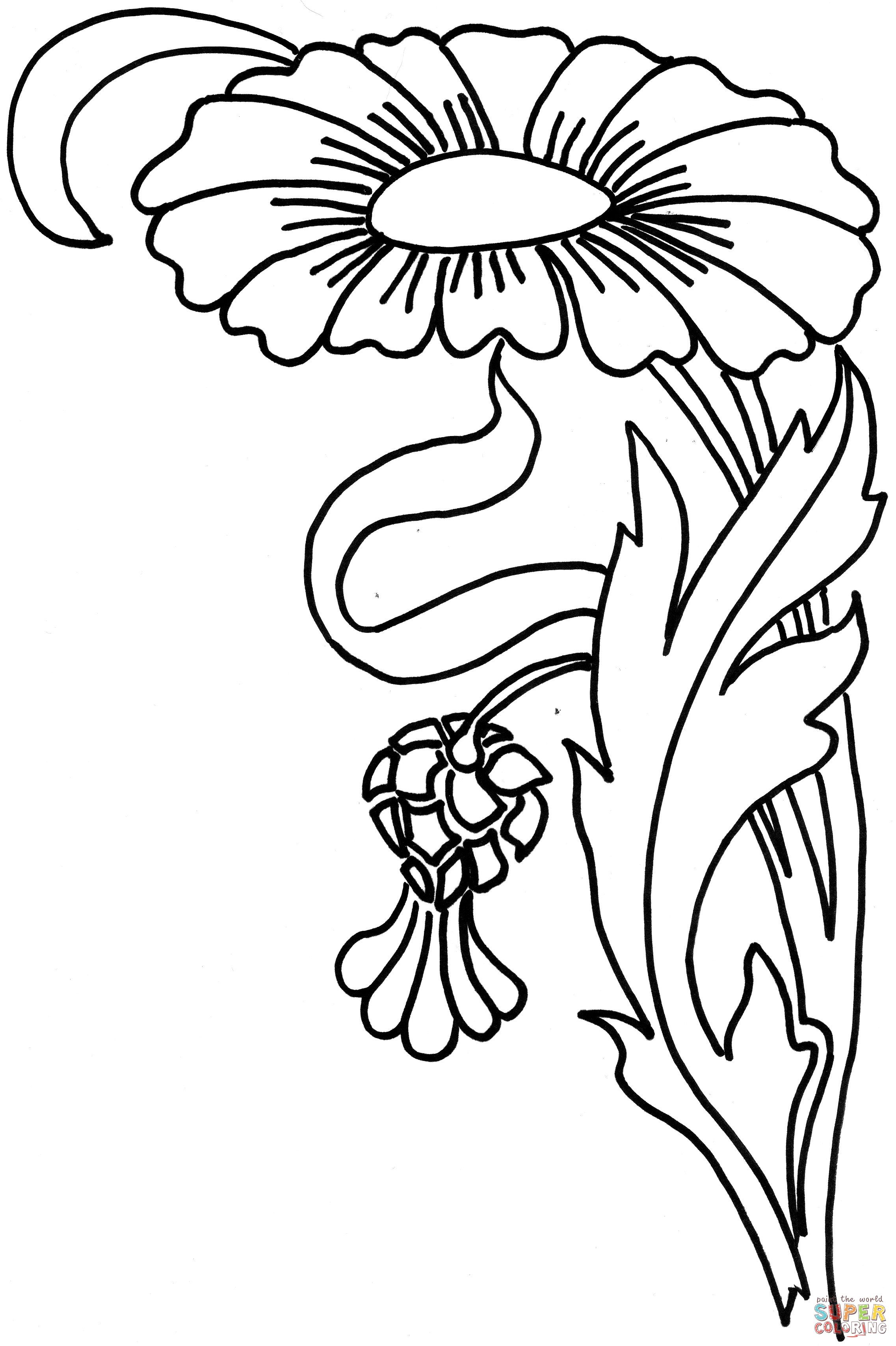 Zinnia Flower Coloring Page Free Printable Coloring Pages With