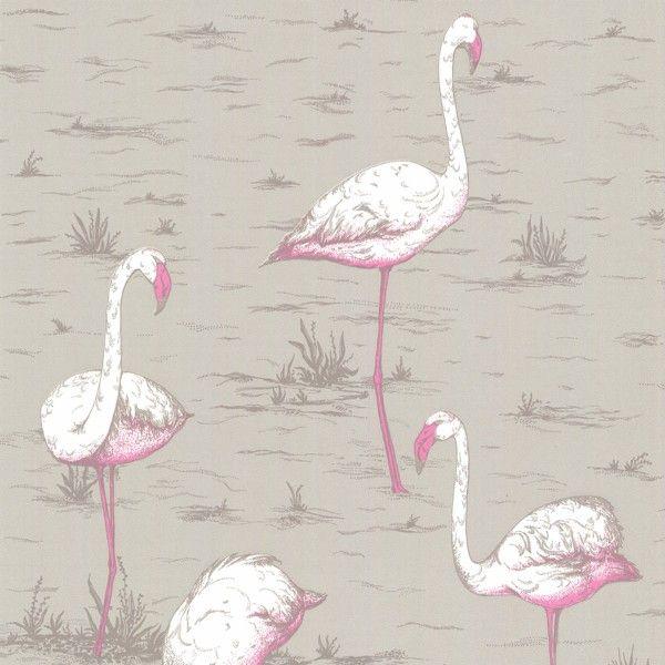 flamant rose hey flamingos papier peint papier peint. Black Bedroom Furniture Sets. Home Design Ideas