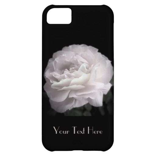 iPhone 5c Case, A Pale Pink Rose - This iPhone 5c case is decorated with a single, ultra pale pink rose. What a beautiful complement for your new iPhone. Customize text as desired - name, i love you, classy lady - create your own unique text. Original photograph by Alan Socolik. All Rights Reserved © 2013 Alan & Marcia Socolik. #Roses #Classy #Customize #iPhone5c