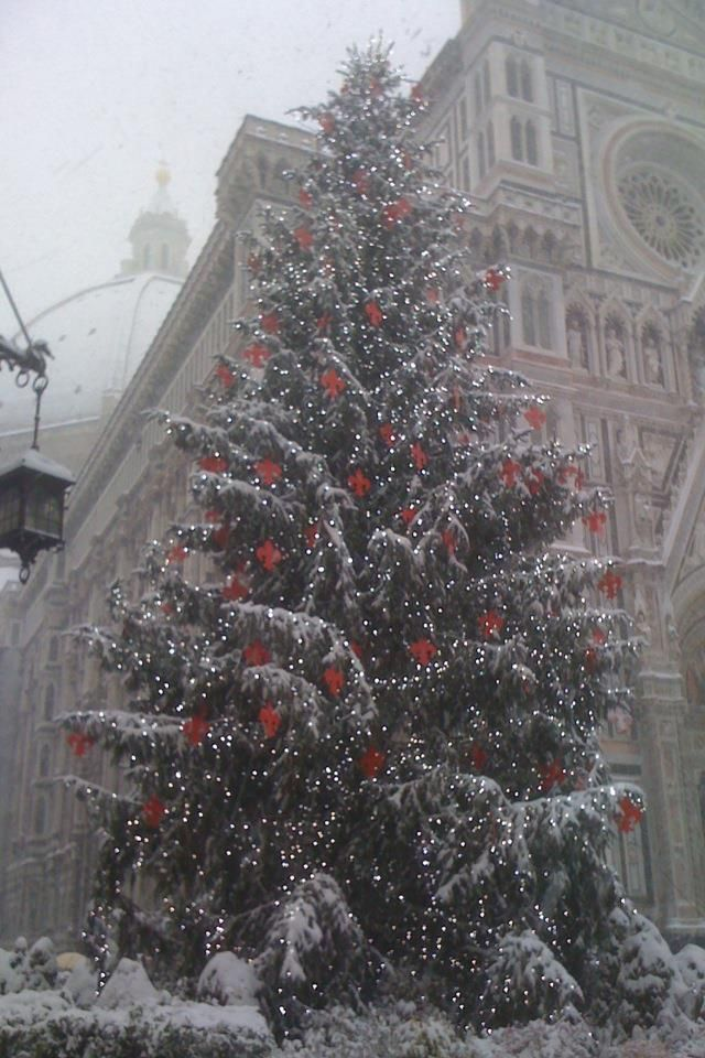 Christmas in Florence, Italy Christmas ! Pinterest Florence
