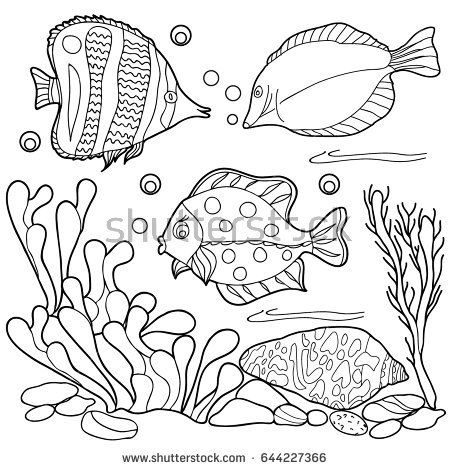 Coloring For Children Sea Creatures Hand Drawn Black And White