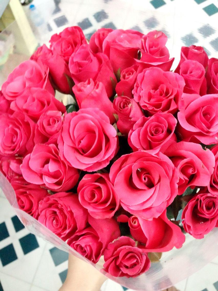 My first flowers :))) so sweet  but it's enough. What do you mean?? I swear I  want your answer.  Mie nó ghét vđ, sao cứ thích chơi quả cù nhầy này vậy????? Đến thì đến luôn đi, đừng khiến bà bận tâm vì mấy trò vô bổ này
