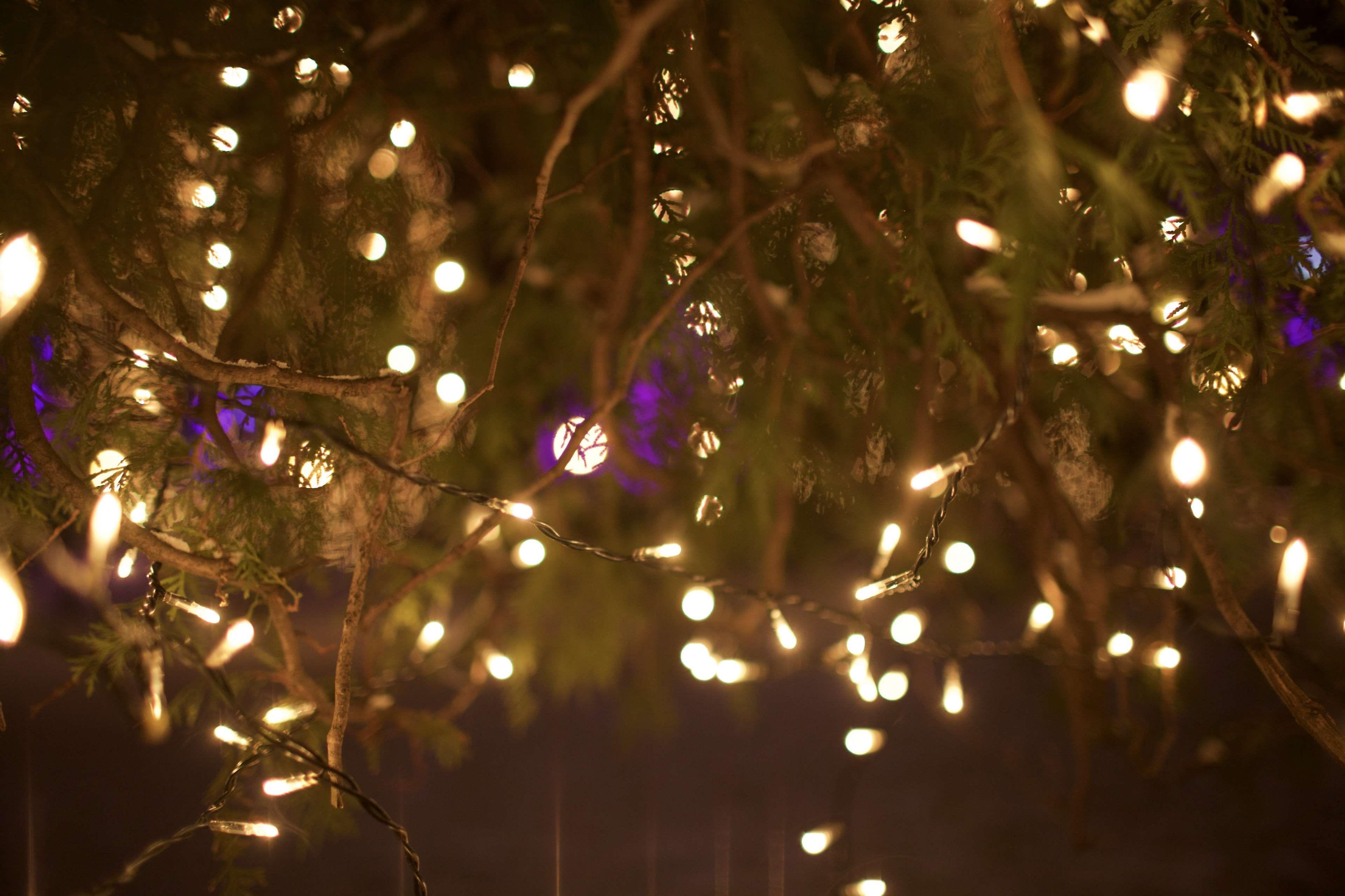Wallpaper Images Hd Background Bokeh Christmas Decoration Lights Dark Deep