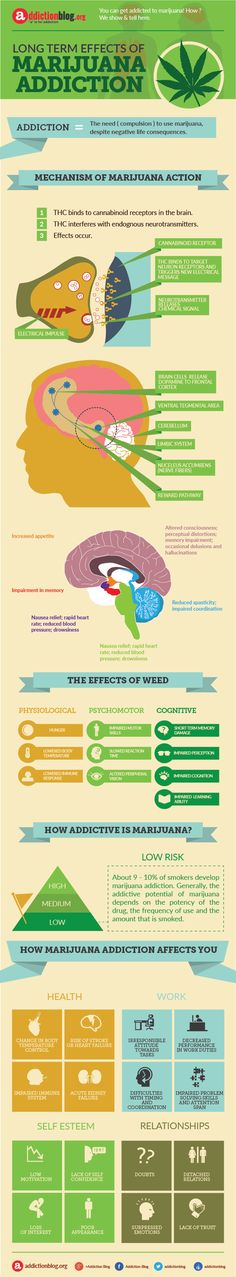 Long Term Effects Of Marijuana Addiction Infographic  Therapy