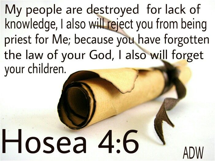 """Hosea 4:6 : """"My people are destroyed for lack of knowledge: because you  have rejected knowledge, I will also reje… 