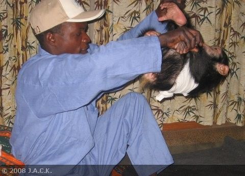 faustin-playing-with-tongo.jpg