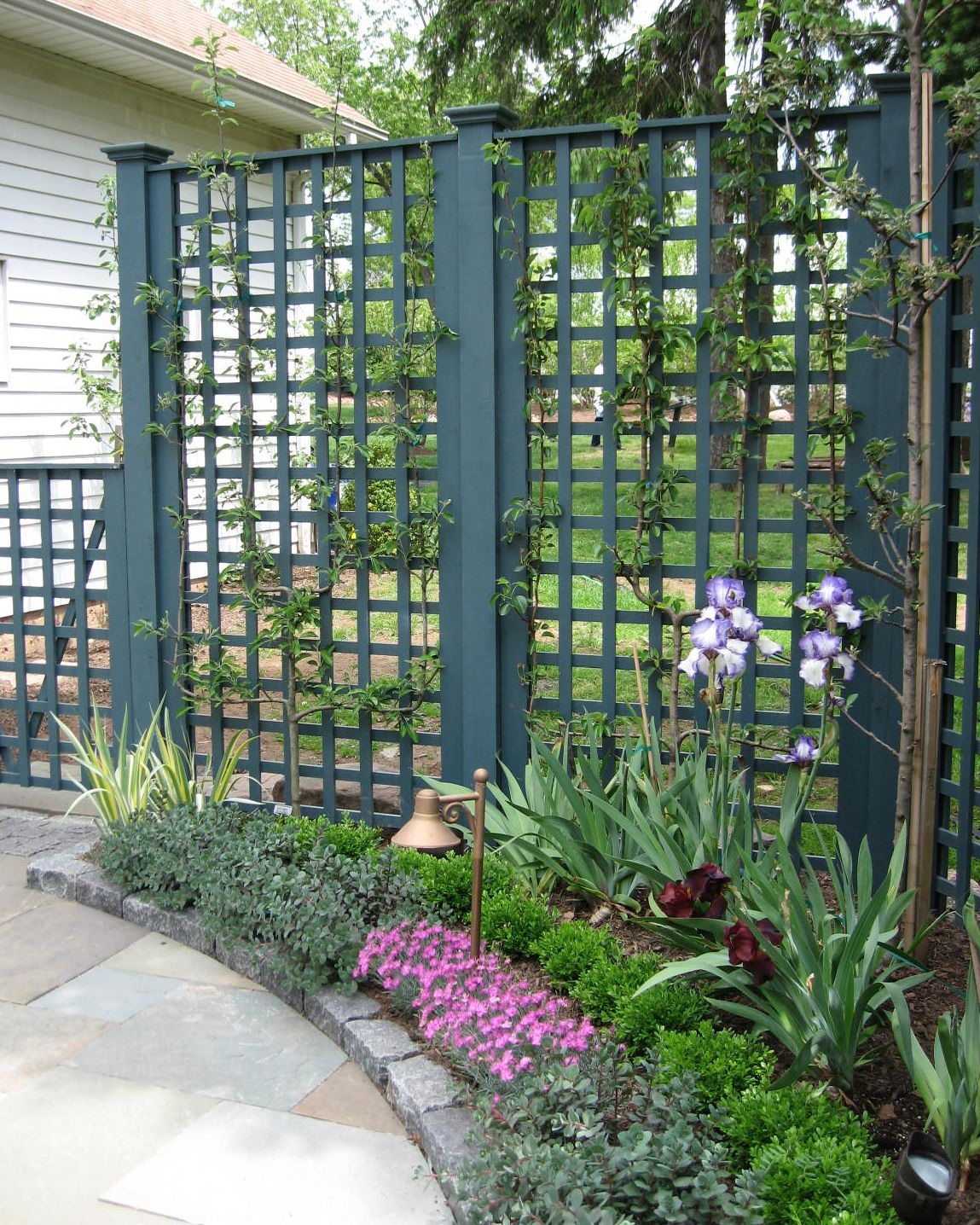 Planting And Trellis Detail For A Small Raised Patio