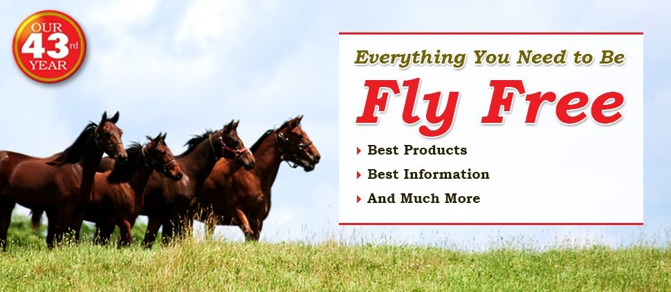 Get rid of flies around your horses with fly predators