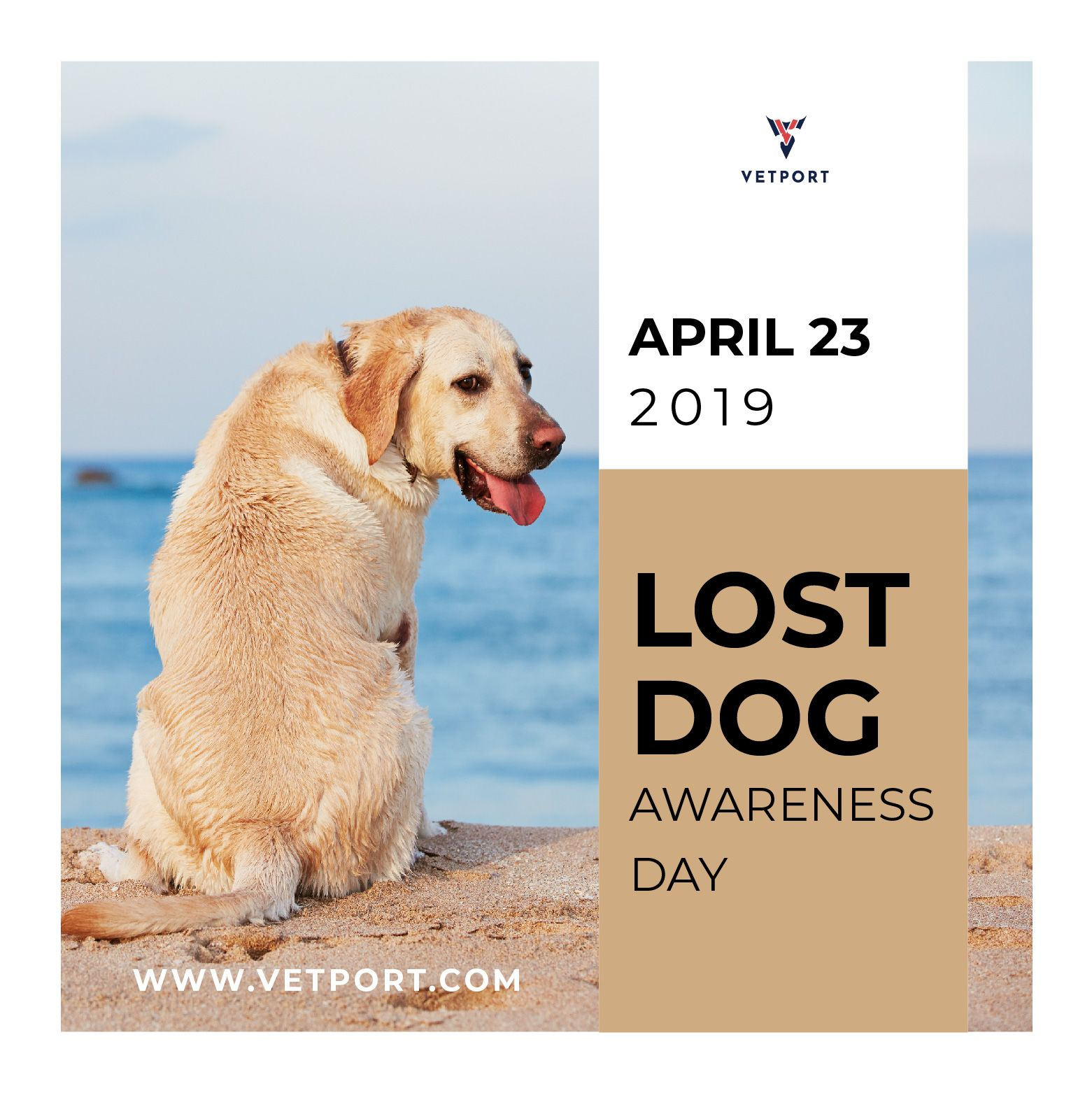 National Lost Dog Awareness Day April 23 2019 Lostdog