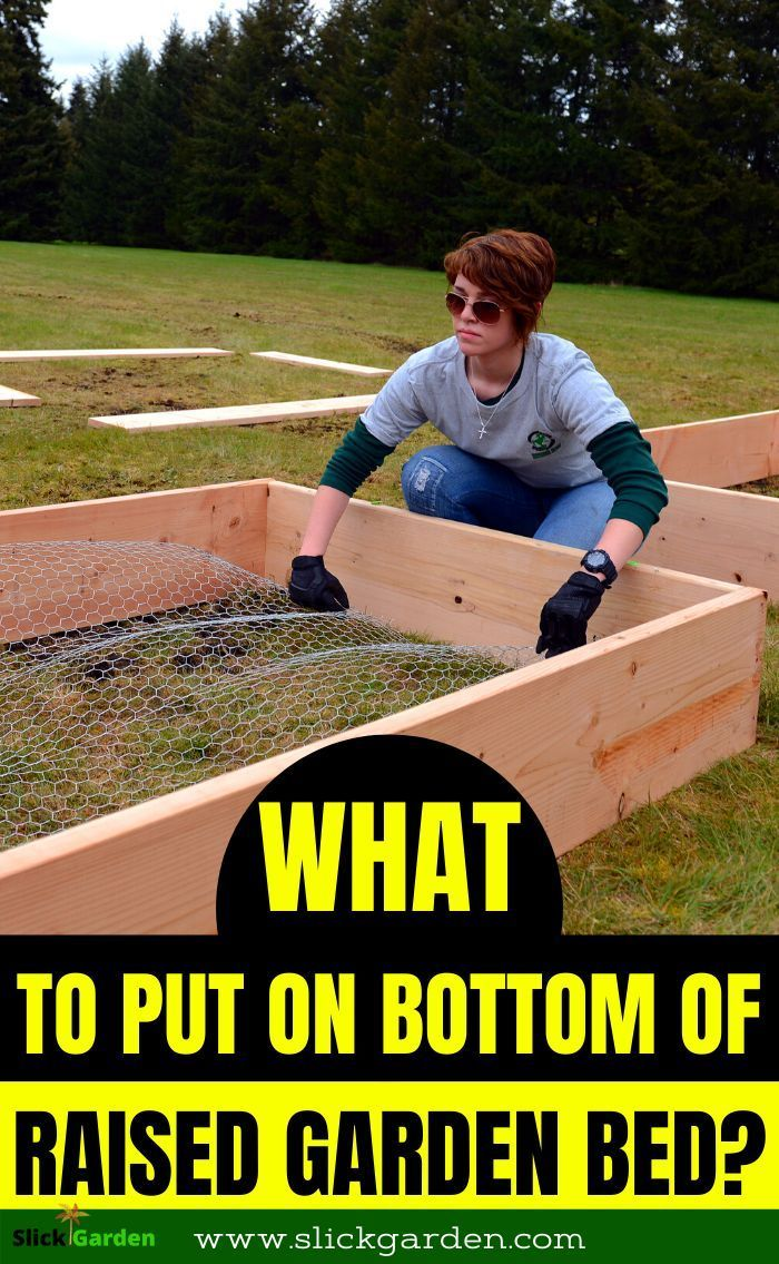 What Do I Put On The Bottom Of A Raised Garden Bed In 2020 With Images In 2020 Building Raised Garden Beds Diy Raised Garden Raised Garden Beds Diy