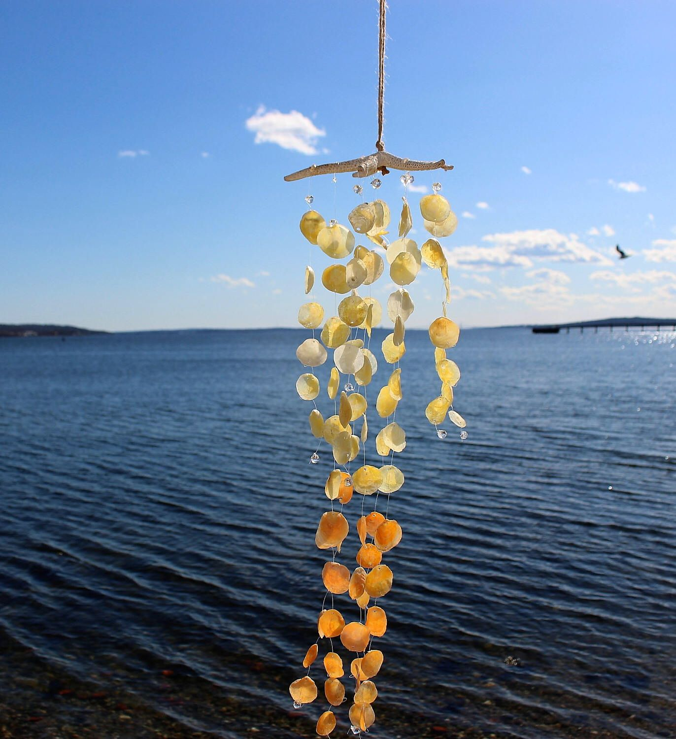 A personal favorite from my Etsy shop https://www.etsy.com/listing/523279925/jingleshell-wind-chime-ombre-jingle