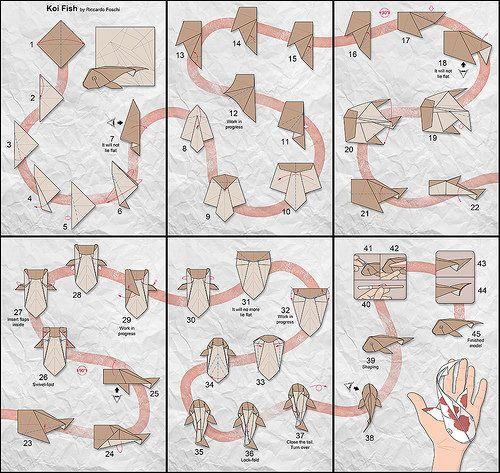 Koi Diagrams Koi Diagram And Origami