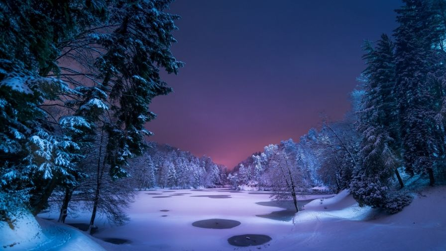Snowy Landscape Nature Hd Wallpaper Winter Landscape Winter Nature Night Landscape