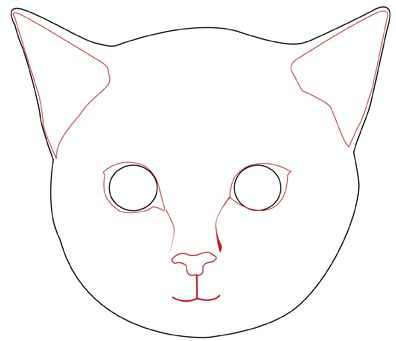 draw a realistic cats face cat face simple drawings