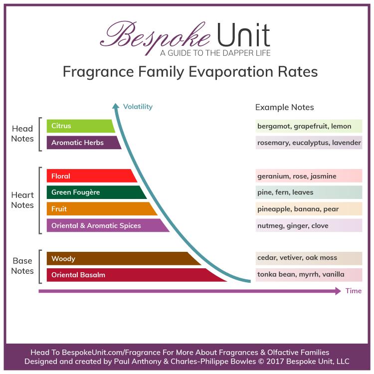 Fragrance Family Volatility Life Cycle Perfume Pyramid Luxury Fragrance Fragrance Set Fragrance